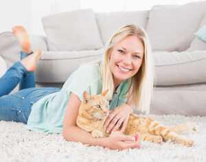 adopt a cat petconcerige
