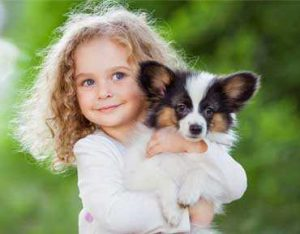 joyful pets bringing home-new-puppy